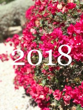 2018 Goals and BucketList